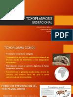 toxoplasmosisgestacional-140725195604-phpapp01