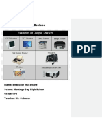 output Devices 17.docx