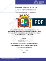 Maman_Claros_Maribel_Edilburga.pdf