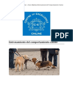 Comportamiento Canino - Módulo 1