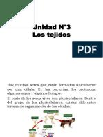 06 Los tejidos (1).pptx
