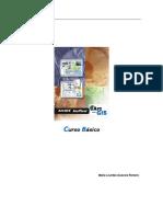 Manual ArcGis Basico Completo