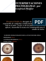 Cromatografia - 3 Interpretaciones de Pfeiffer 1