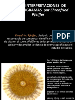 Cromatografia - 4 Interpretaciones de Pfeiffer 2