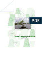 Especies más populares de bonsai