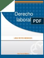Derecho_laboral - libro.pdf