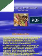 Importancia d Ela Nutricion