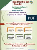 Biologia Molecular RFLP.pptx