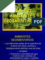 04 ambientes-sedimentarios-1.pdf