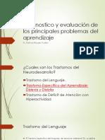 Diagnostico y Evaluación de Los Principales Problemas Del Apredizje