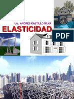 ELASTICIDAD.pdf