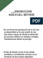 REPRODUCCION-ASEXUAL.pptx