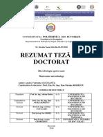 Rezumat_teza_-_Amira_GOGOAN.pdf
