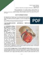 24 - Anatomia II - 27-03-2017