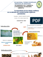 Impacto de los compuestos orgánicos persistentes en las abejas