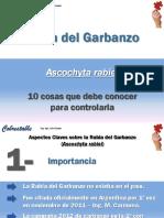 Rabia Del Garbanzo Para PDF