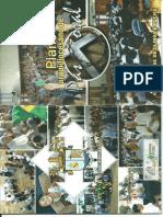 Plano Arquidiocesano de Pastoral - Olinda e Recife