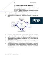 Microsoft Word - CUESTIONES 16.Catabolismo.doc
