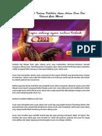 Mengenal Lebih Tentang Kelebihan Ayam Aduan Siam Dan Khasiat Gula Merah