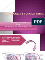 embriologiayfuncionrenal-121015000610-phpapp02