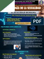 Exposicion Neurologia de La Sexualidad