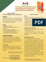 Curso Intervenciones Breves en Adicciones 2017