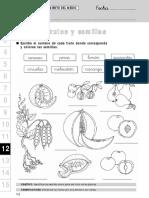 frutosysemillas-140612194827-phpapp02