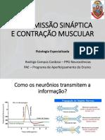 Transmissão Sináptica - Prof Rodrigo.pdf