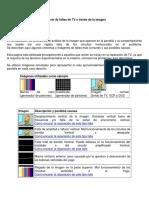 242740883-Analisis-de-fallas-de-TV-a-traves-de-la-imagen-pdf.pdf