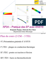 [Nf04] Cm Ansys
