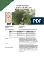 Ficha Técnica de Cultivo de Pallar (Phaseolus Lunatus)