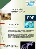 Clonacion y Terapia Genica