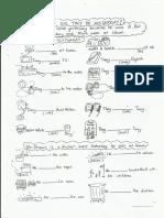 simple-past-class-sheet.pdf