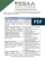 338929575-Guia-de-20-Elementos-a-Cumplir-Para-PSST.docx
