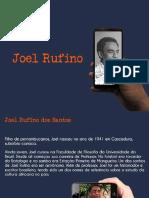 Joel Rufino Dos Santos