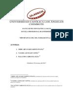 Monografia Rol Familiar IV