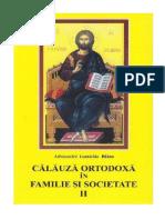 Balan, Ioanichie Arhim. - Calauza Ortodoxa in Familie Si Societate v.1.0