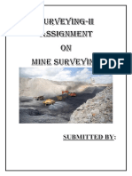 1.Mine Surveying Report