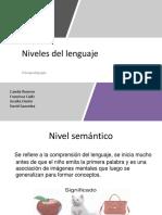 Niveles lenguaje