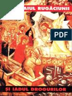 313250574-Mihaela-Ion-Intre-Raiul-rugaciunii-si-iadul-drogurilor-pdf.pdf