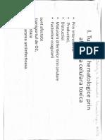 lp-fiziopat-sdr-hematologice-toxice.pdf