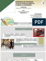 DISTRIBUCIÓN EN MARKETING Y CANALES DE DISTRIBUCIÓN