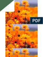 SAP MOBILE_GB - Copy.pptx