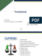 Feminism Ul