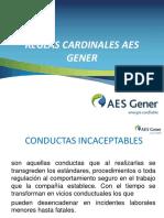 reglas cardinales GNER.ppt