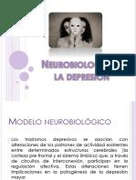 Neurobiología de La Depresión-expo