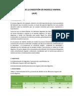 FISIOLOGÍA-DE-LA-DIGESTIÓN-EN-MODELO-ANIMAL.docx
