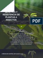 Resistencia de Plantas a Insectos