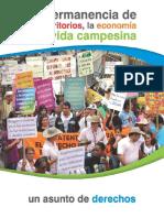 La Permanencia de Los Territorios, La Economía y La Vida Campesina. Un Asunto de Derechos.