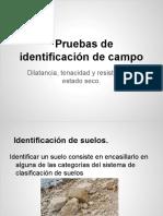 Pruebas de Identificación de Campo